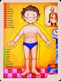 WOODY Puzzle 13 ks - lidské tělo