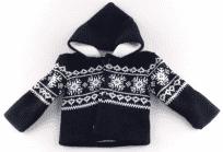 Sweter z kapturem Aardvark