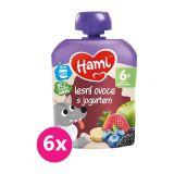 6x HAMI Ovocná kapsička Lesné ovocie s jogurtom (90 g)
