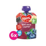 6x HAMI Ovocná kapsička Lesní ovoce s jogurtem (90 g)