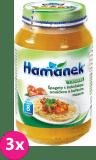 3x HAMÁNEK Špagety boloňskou omáčkou a kuřecím masem (230 g) - masozeleninový příkrm
