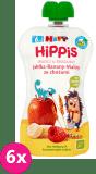 6x HiPP BIO HiPPiS Jabłka-Banany-Maliny ze zbożami Mus owocowy po 6. miesiącu 100 g