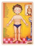 """WOODY Puzzle """"ludzkie ciało"""" z językiem angielskim"""