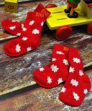 BLADE&ROSE Ponožky Red Daisy (2 ks) 6-12 mesiacov
