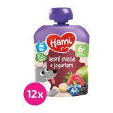 12x HAMI XXL ovocná kapsička Lesní ovoce s jogurtem 90 g, 6+