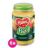 6x HAMI BIO Ovocný příkrm S Ananasem 190 g, 6+