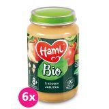 6x HAMI BIO Ovocný příkrm S kousky jablíčka 190 g, 8+