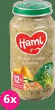 6x HAMI Brokolica a morčacie prsia (250 g) - mäsovo-zeleninový príkrm