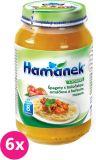 6x HAMÁNEK Špagety boloňskou omáčkou a kuřecím masem (230 g) - masozeleninový příkrm