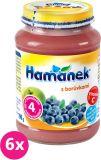 6x HAMÁNEK S borůvkami (190 g) - ovocný příkrm