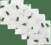 Libštátské pleny Dětská bavlněná plena, 70x70 cm, potisk, 5ks, Beruška