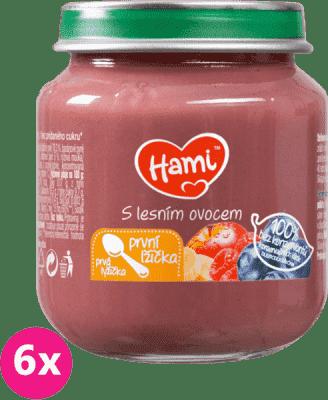 6x HAMI S lesním ovocem první lžička (125 g) - ovocný příkrm