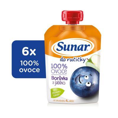 6x SUNAR Do ručičky čučoriedka 100 g