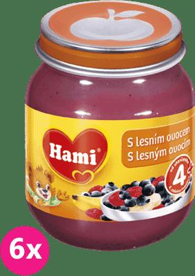 6x HAMI s lesným ovocím125g - ovocný príkrm