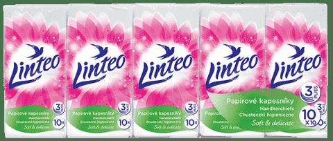 LINTEO Papírové kapesníky 10x10, 3 vrstvé
