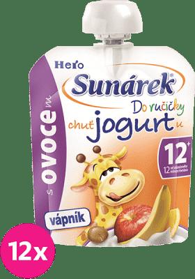 12x SUNÁREK Do ručičky s ovocem a jogurtem 80g