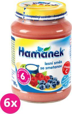 6x HAMÁNEK Kojenecká výživa ovocná Svačinka se smetanou a lesní směs, (190 g) - ovocný příkrm
