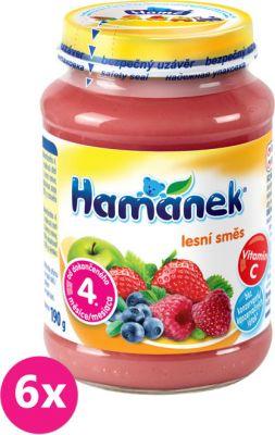 6x HAMÁNEK S lesním ovocem, (190 g) - ovocný příkrm