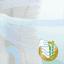 PAMPERS Premium Care Pants 4 MAXI 44ks (9-14 kg) - plenkové kalhotky